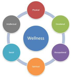 A holistic approach