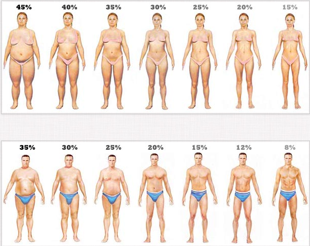 Healthy fat percentage for women