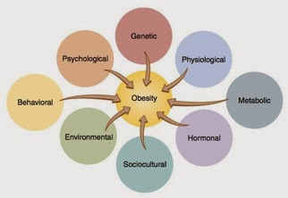 obesity-causes